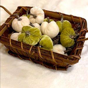 Basket Full 12 Velvet Pumpkins!